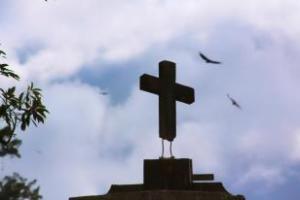 Cross Alene